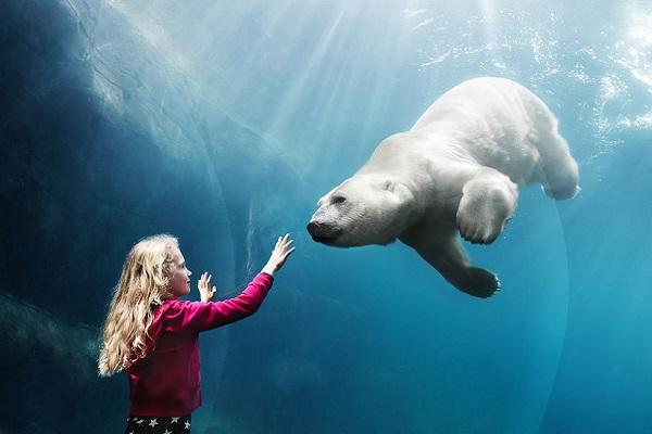 Bild: Köpenhamn Zoo