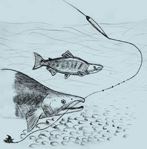 Fiskareuppror om slussen