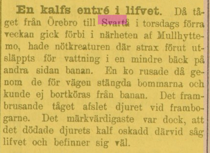 18971130