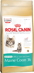 Royal Canin Kitten Maine Coon 36 - Royal Canin Kitten Maine Coon 36 - 10 kg