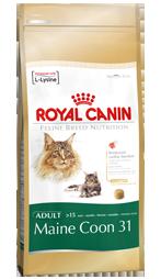 Royal Canin Maine Coon 31 - Royal Canin Maine Coon 31 - 2 kg
