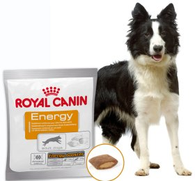 Royal Canin Energy - Royal Canin Energy