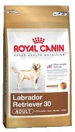 Royal Canin Breed Labrador Retriever 30 Adult - Royal Canin Breed Labrador Retriever 30 Adult - 3 kg