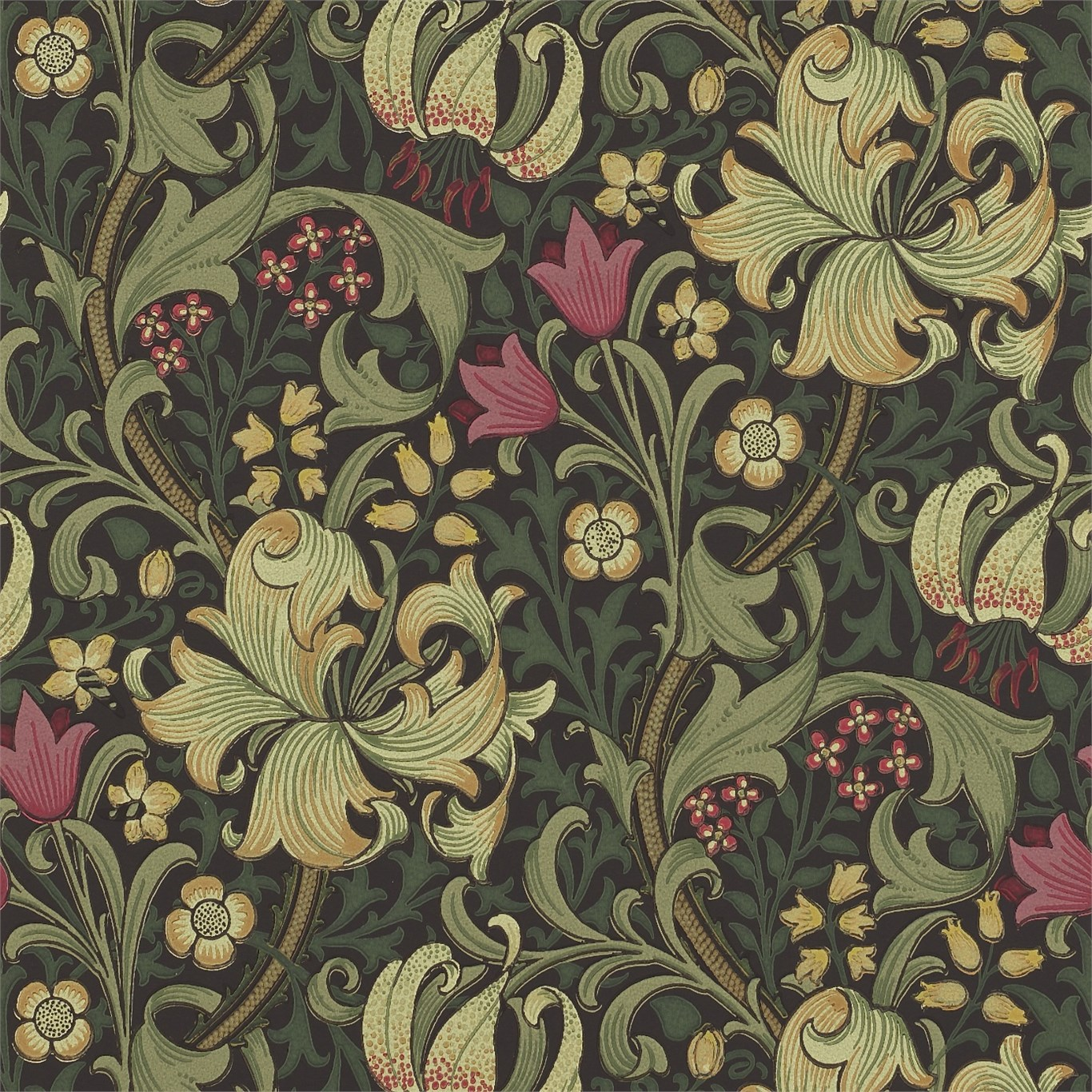 WILLIAM MORRIS Tapet Golden Lily (6 färger) Pris per rulle ...