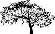 Encaustic Art - Stämpel - Ekträd