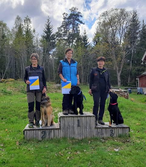 Duktiga förare och hundar på prispallen, elit spår på Hofors BK. Foto: Tina Rokka