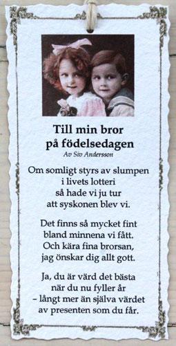 grattis brorsan dikt Diktkort   Till min bror på födelsedagen | Butik Älva grattis brorsan dikt