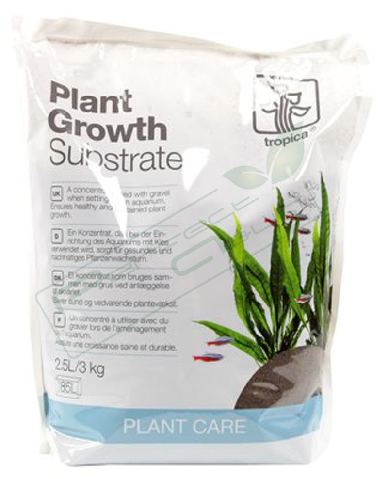 Tropica plante substrat