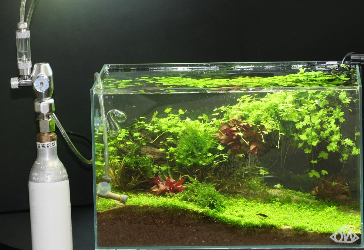 CO2 set3