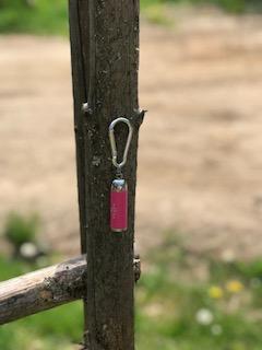 Nyckelringslampa rosa