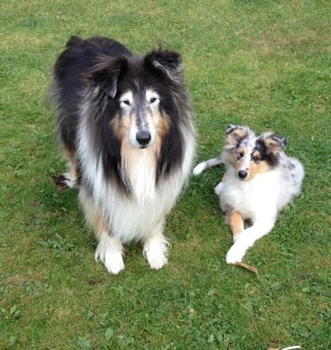 Molly och ROXY