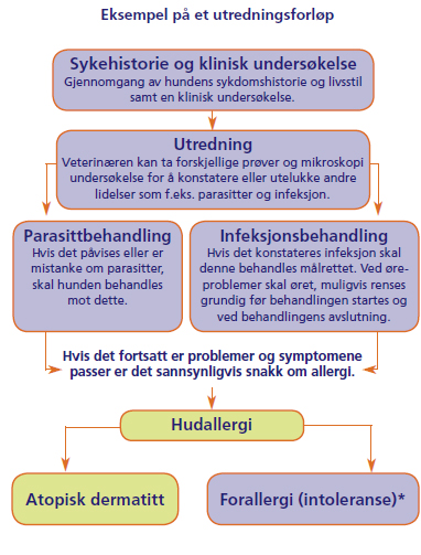 Bild og text fra Novartis Animal Health informasjonsblad for dyreier.