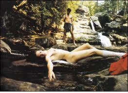 Sex, våld och naket var temat för filmen