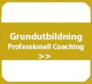 Grundutbildning professionell coaching sälj