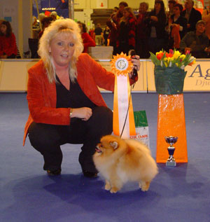 BIG-5 at My Dog International show Göteborg  5/1-07