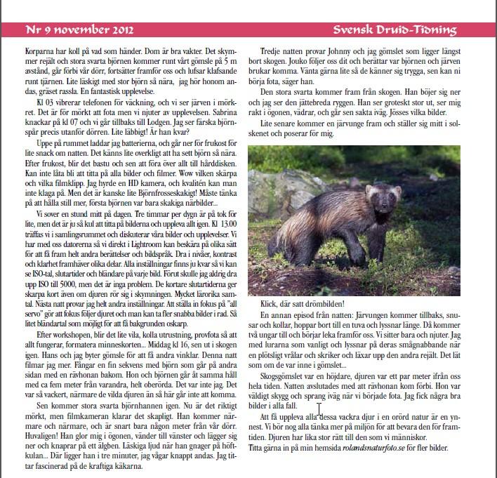 Artikel i Svensk Druidtidning nr 9 nov 2012 fortsättning