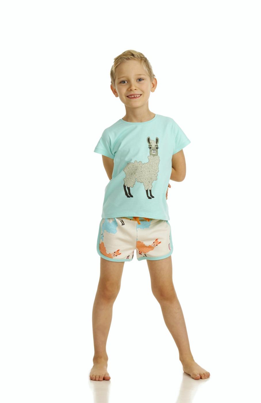 17SSTA T-shirt Alpaca  G