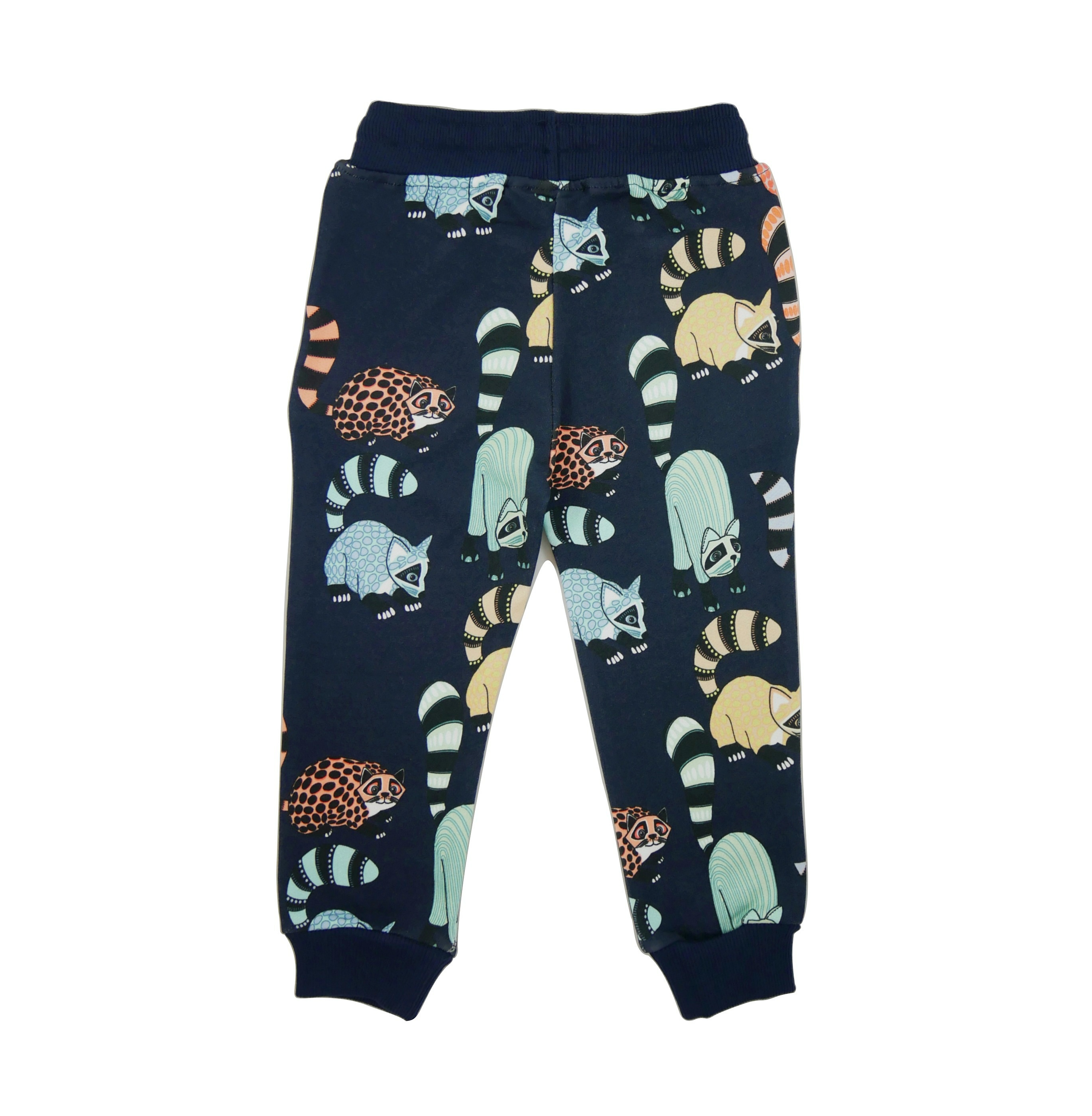 19SSPOA Sweatpants Oaxacan AOP back