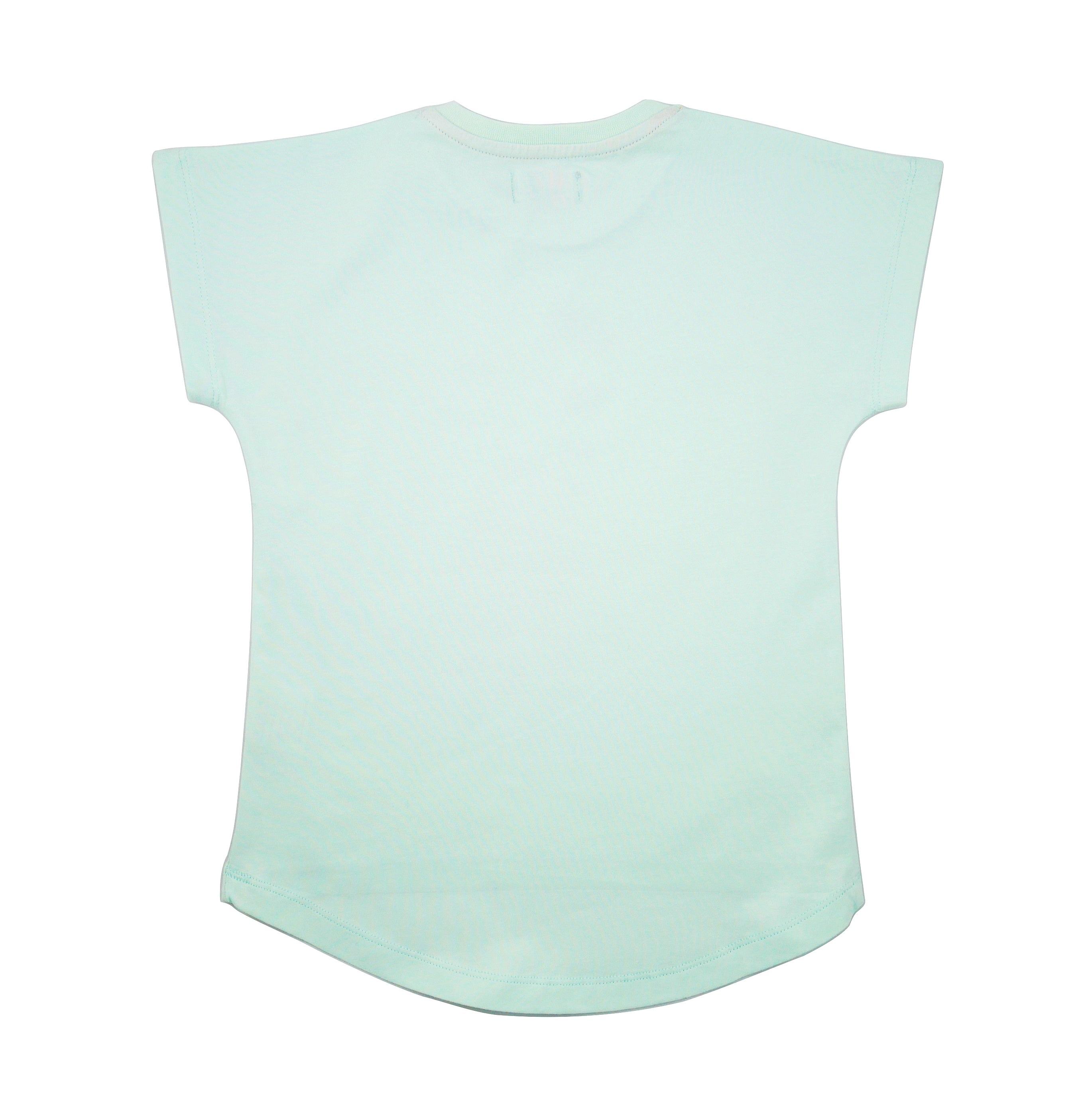 19SSTOA T-shirt Oaxacan Aqua back