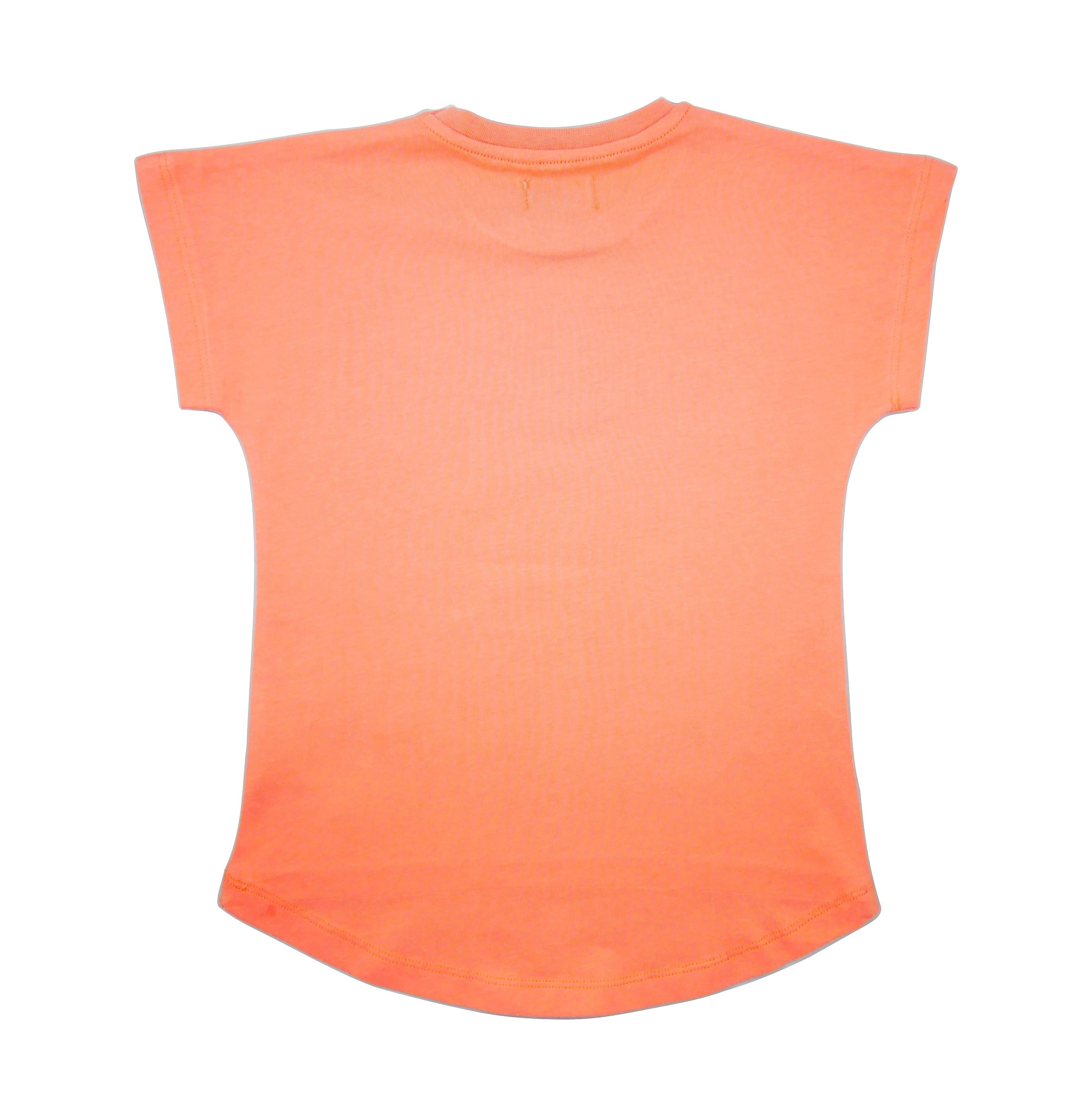 19SSTOP T-shirt Oaxacan Papaya back